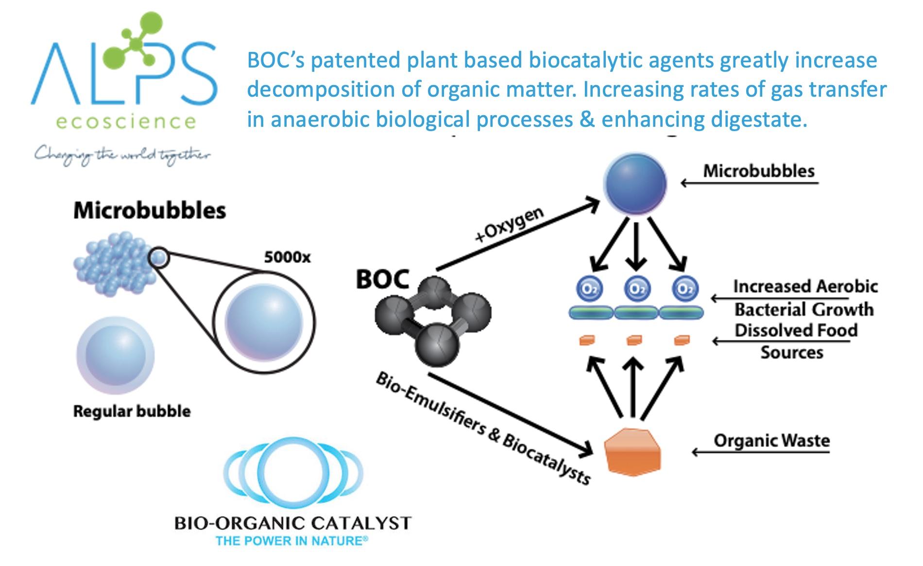 BOC process overview